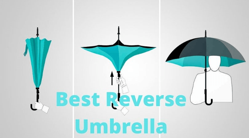 Best Reverse Umbrella